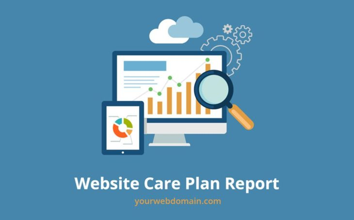 As a subscriber, you will receive a care plan report each month.