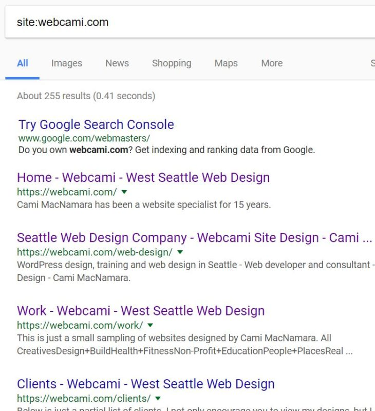 Webcami.com search results in Google