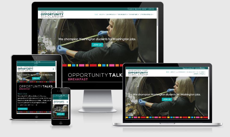 view of responsive nonprofit website