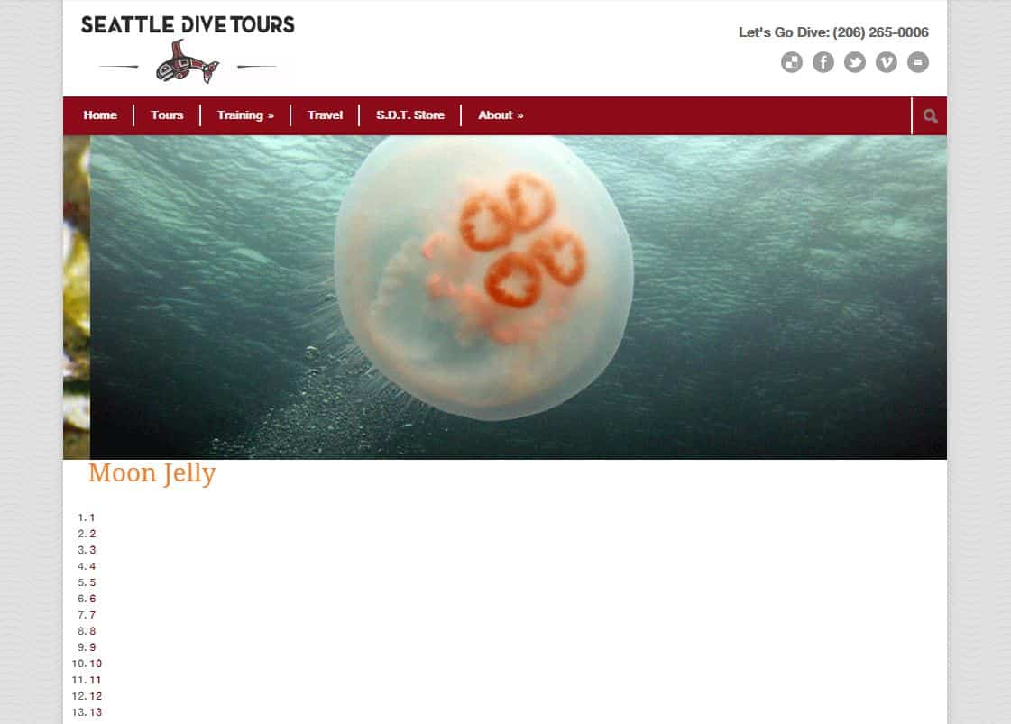 Seattle Dive Tours website before