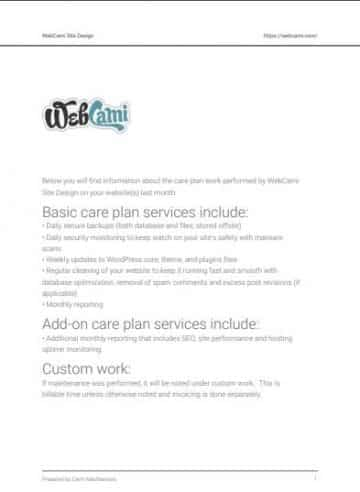 webcami client report service overview